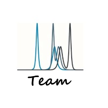 Logo mit Schriftzug Team